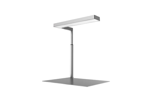 ONF Flat Nano Stand LED Light