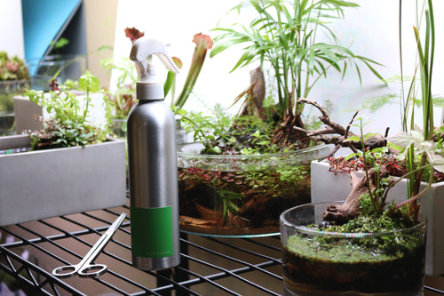 Studio Aquatica Wabi Kusa Misting Bottle