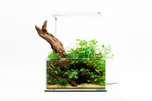 UNS 25S - 2 Gallon Ultra Clear Rimless Aquarium Kit