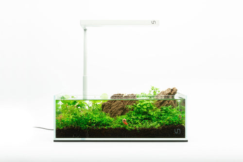 UNS 5S - 2 Gallon Ultra Clear Rimless Aquarium Kit - BucePlant.com