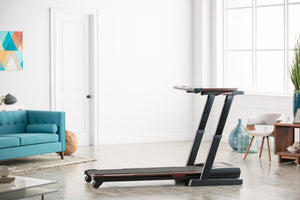 Pro Form Desk Treadmill - Indoor Cyclery