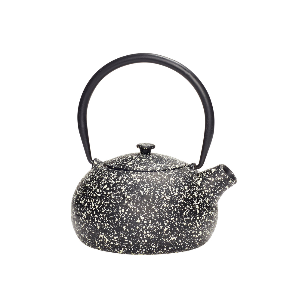 Iron Teapot with Speckles