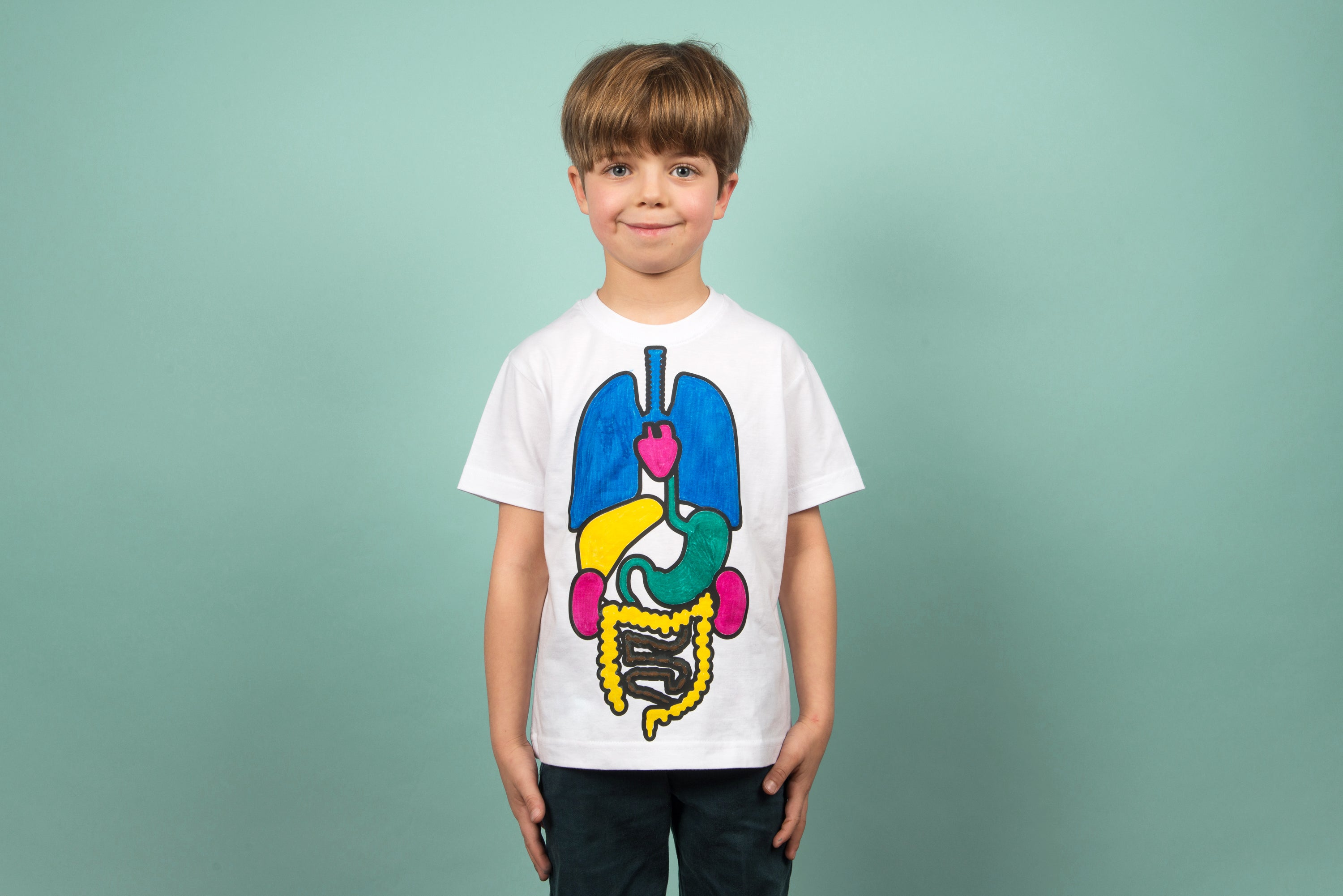 Colour the Body Organs on a Teeshirt - 6 Years