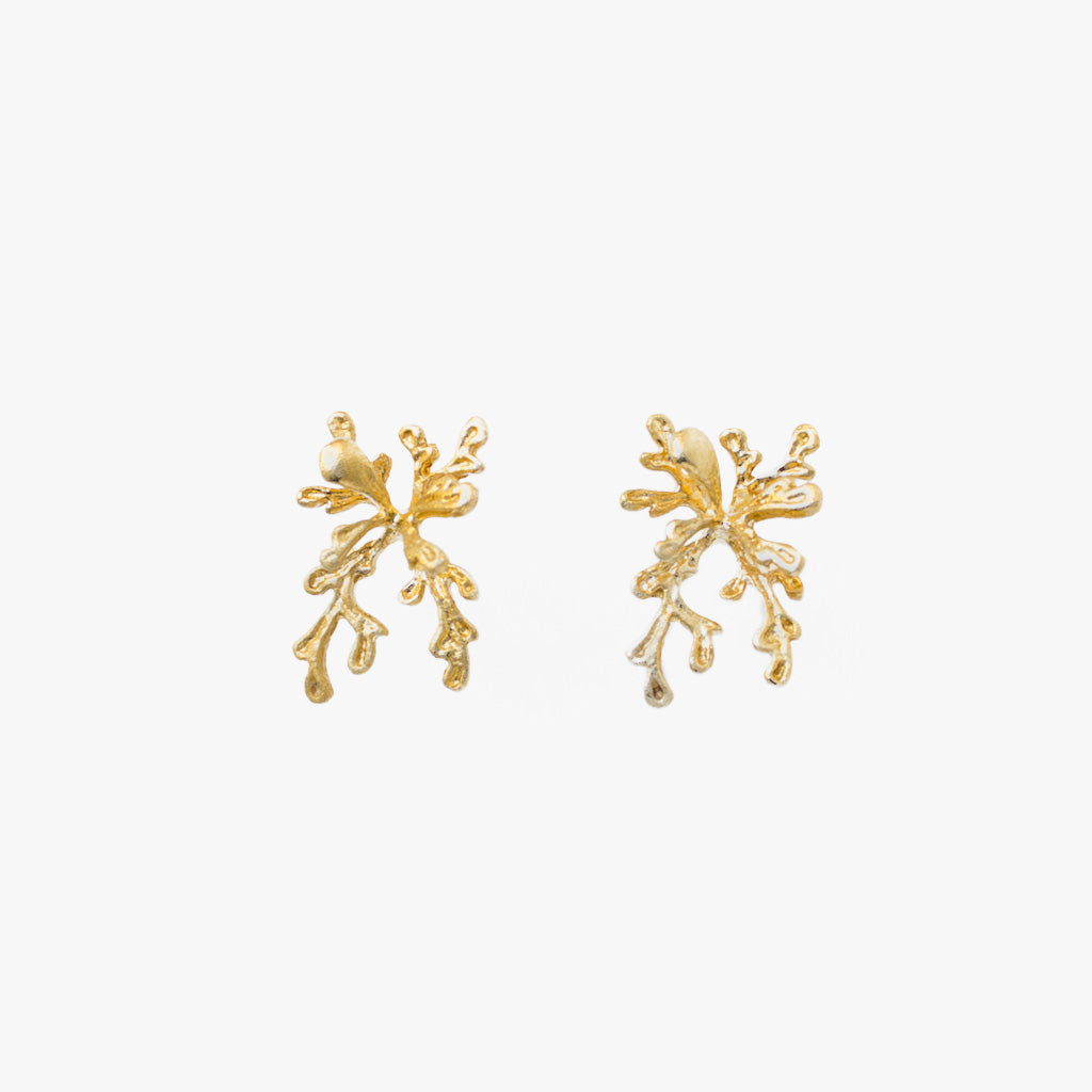 Earrings with Coral Shape