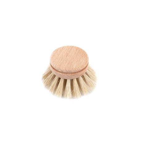 Dish Brush Everyday Refill