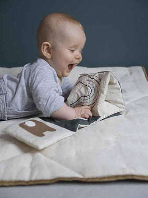 Baby Soft Fabric Book