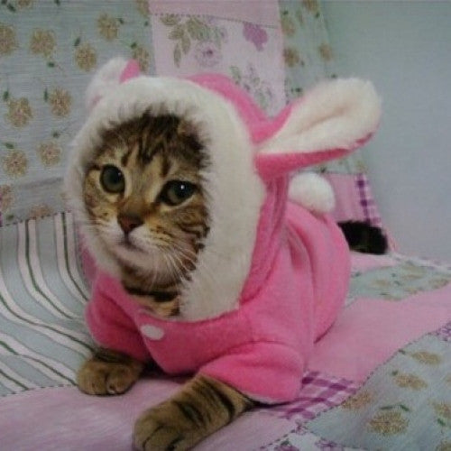 china cheap pet coats/wearing/clothes/garments supplier - Pet clothes for dogs and cats,cute rabbit pattern