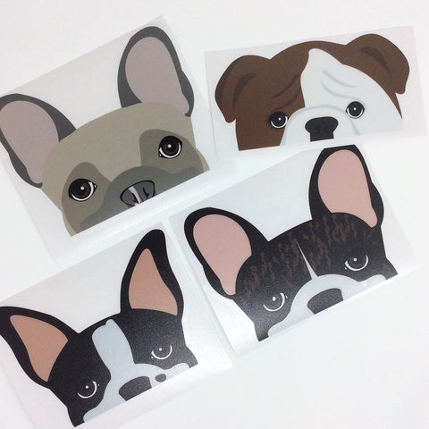 Boston Terrier, Brindle Frenchie, bulldog anglais Le bouledogue français dessiné par Frenchiestore est ensuite transformé en décalcomanies pour voitures.