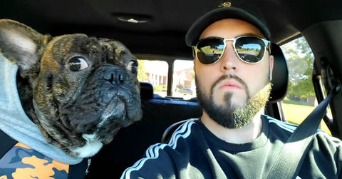 movember frenchie dog e suo padre barbuto