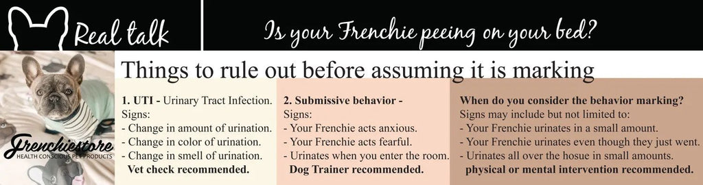 Why is your Frenchie marking your home