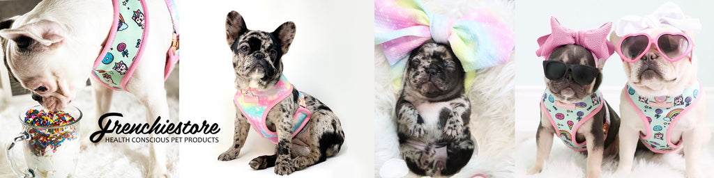 Коллекция Frenchiestore UniPup