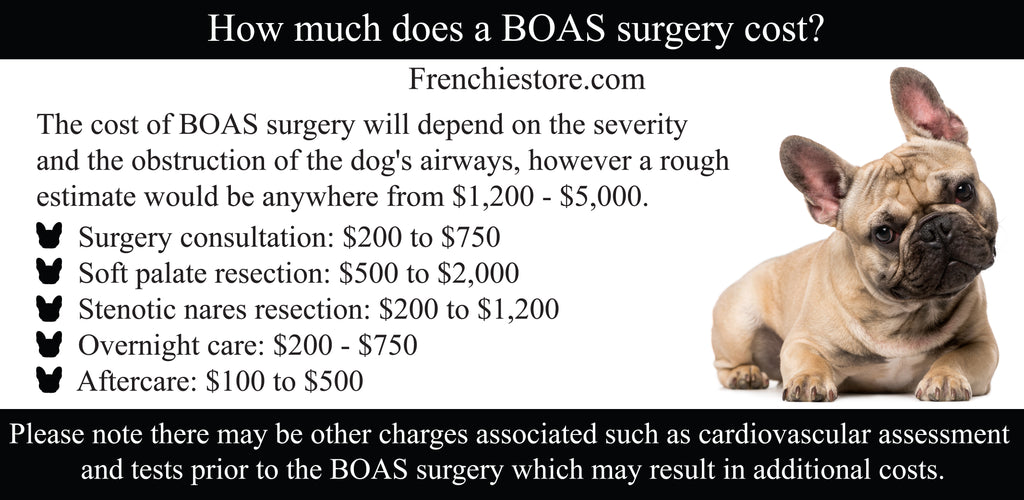 How much does a BOAS surgery cost?