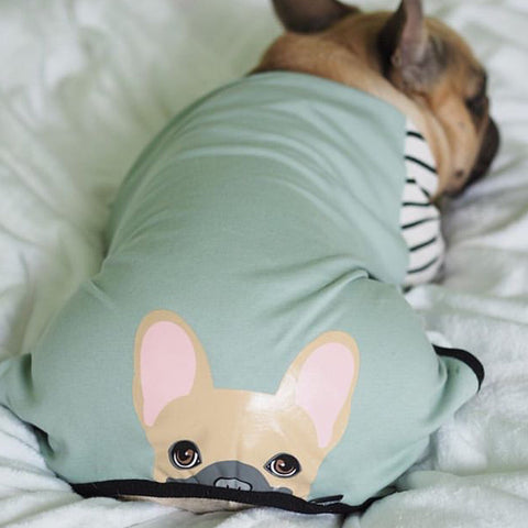 fawn frenchie frenchy bulldog frenchiestore