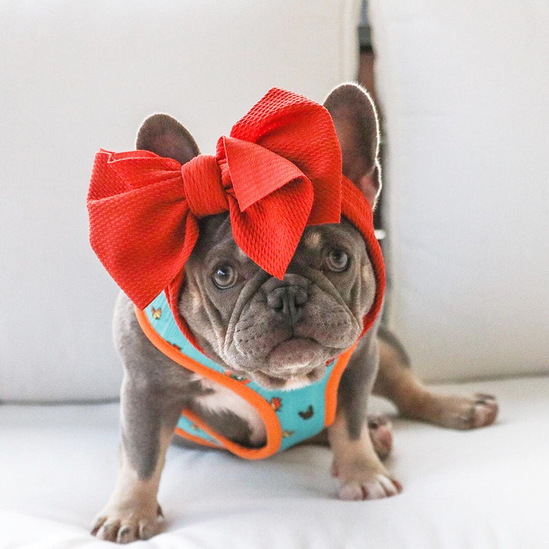 Frenchiestore Pet Head Bow | Vintage rot