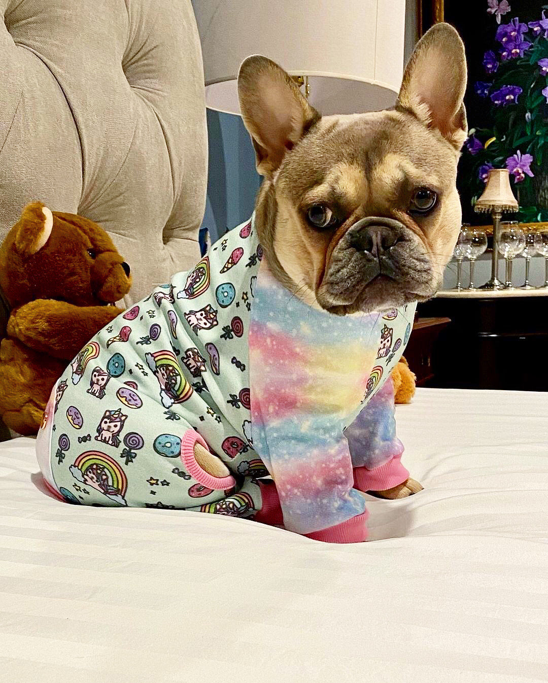 French Bulldog Pajamas | Frenchie Clothing | UniPup