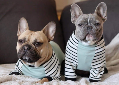 Pyjama Bouledogue Français | Vêtements Frenchie | Chien Frenchie bleu