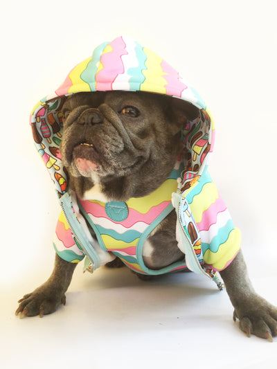 Frenchie Hundehoodie