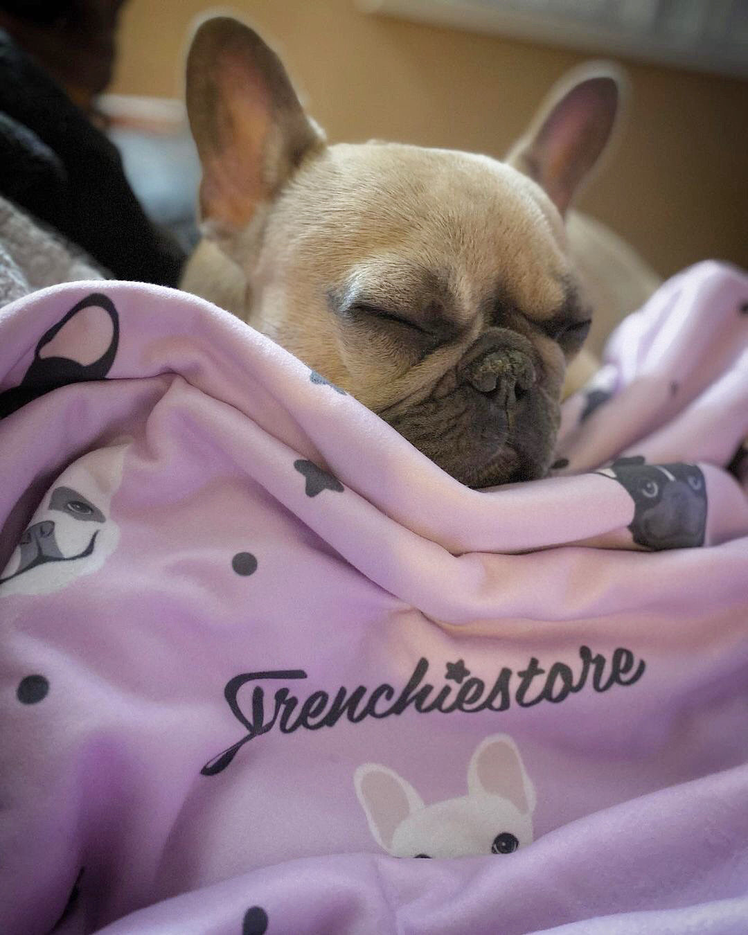 Frenchie Blanket |  French Bulldogs and stars on Lavender