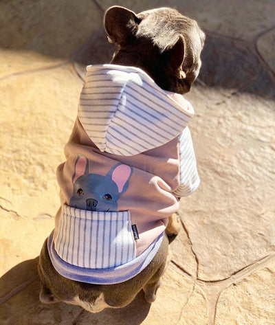 Frenchie dog hoodie Blue French Bulldog organic