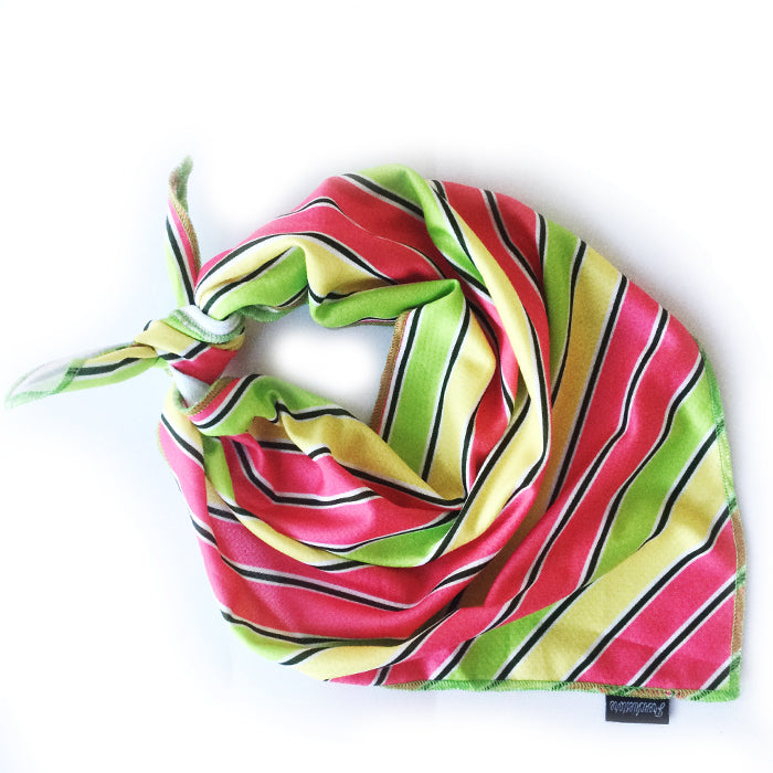 Frenchiestore Dog Cooling Bandana | Apple Stripes