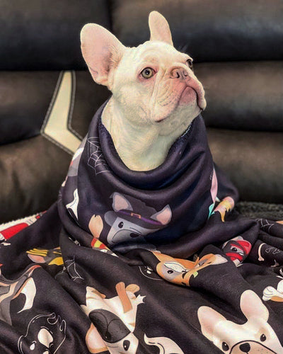Frenchie spoopy blanket