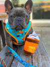 Pumpkin spice latte dog harness