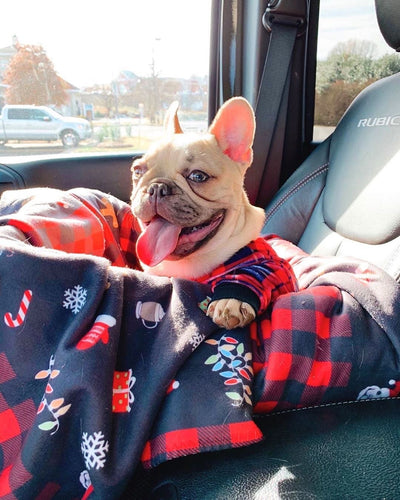 Frenchie Blanket сделано в США Frenchiestore