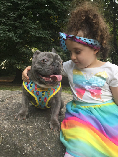 Baby girl and Frenchie matching pet scarf