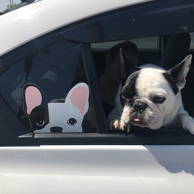Autocollant Frenchie | Frenchiestore | Décalque de voiture Black L Pied Bulldog Français