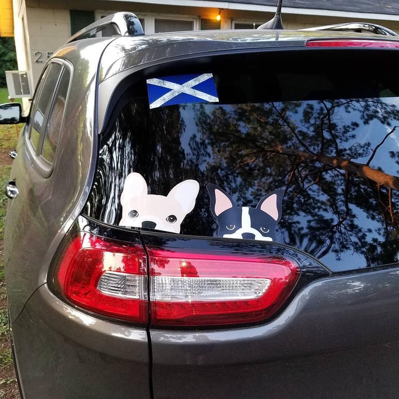 Frenchie Sticker | Frenchiestore | Cream French Bulldog Car Decal