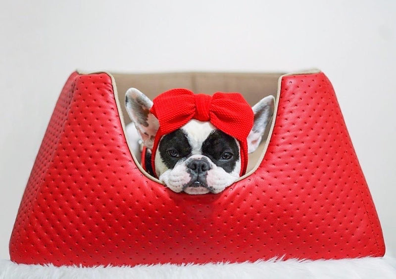 Frenchiestore Pet Head Bow | rojo