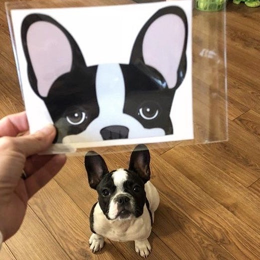 Frenchie Sticker | Frenchiestore | Black Pied French Bulldog Car Decal, Frenchie Dog, French Bulldog pet products