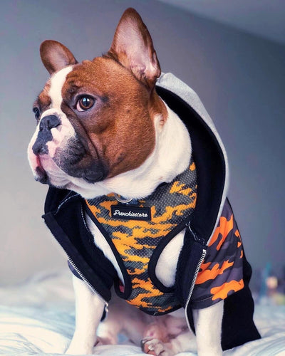 orange camo dog harness frenchie store
