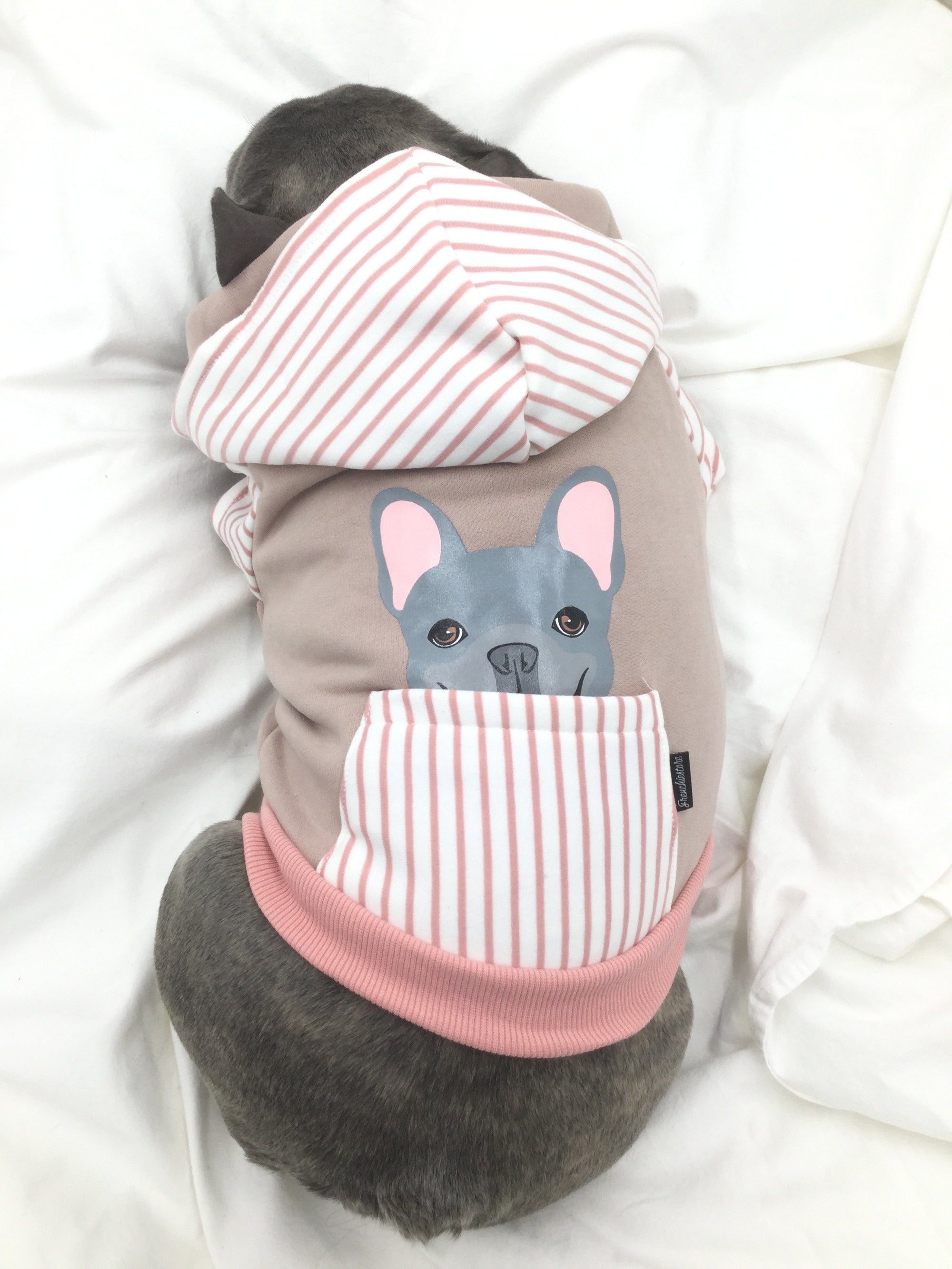 French Bulldog hoodie in pink | Frenchie Clothing | Blue Frenchie dog, Frenchie Dog, French Bulldog pet products