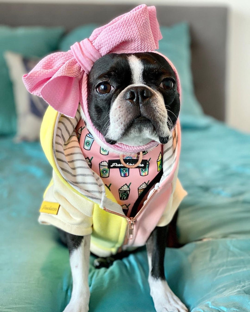 Arc de tête d'animal familier Frenchiestore | Rose clair