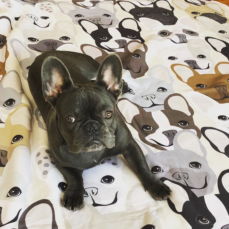 Frenchie Blanket | Frenchiestore | Patrón de Bulldog Francés
