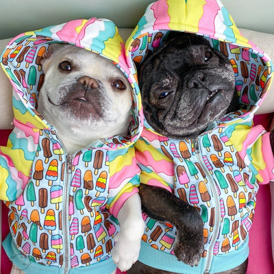Frenchie Hund Bio Hoodies
