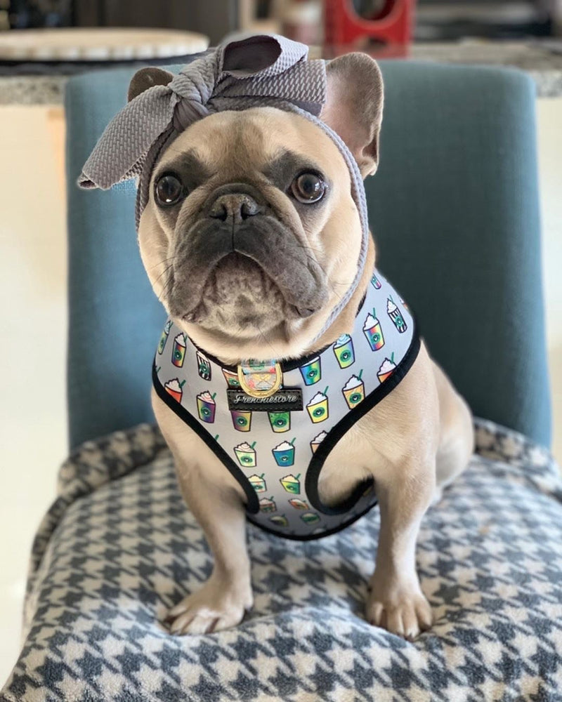 Frenchiestore Pet Head Bow | argent