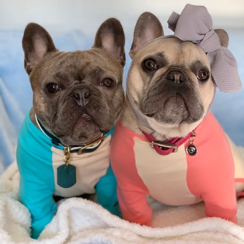 Pyjama Bouledogue Français en Corail | Vêtements Frenchie | Chien Frenchie Masque Fauve