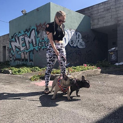Leggings Frenchie