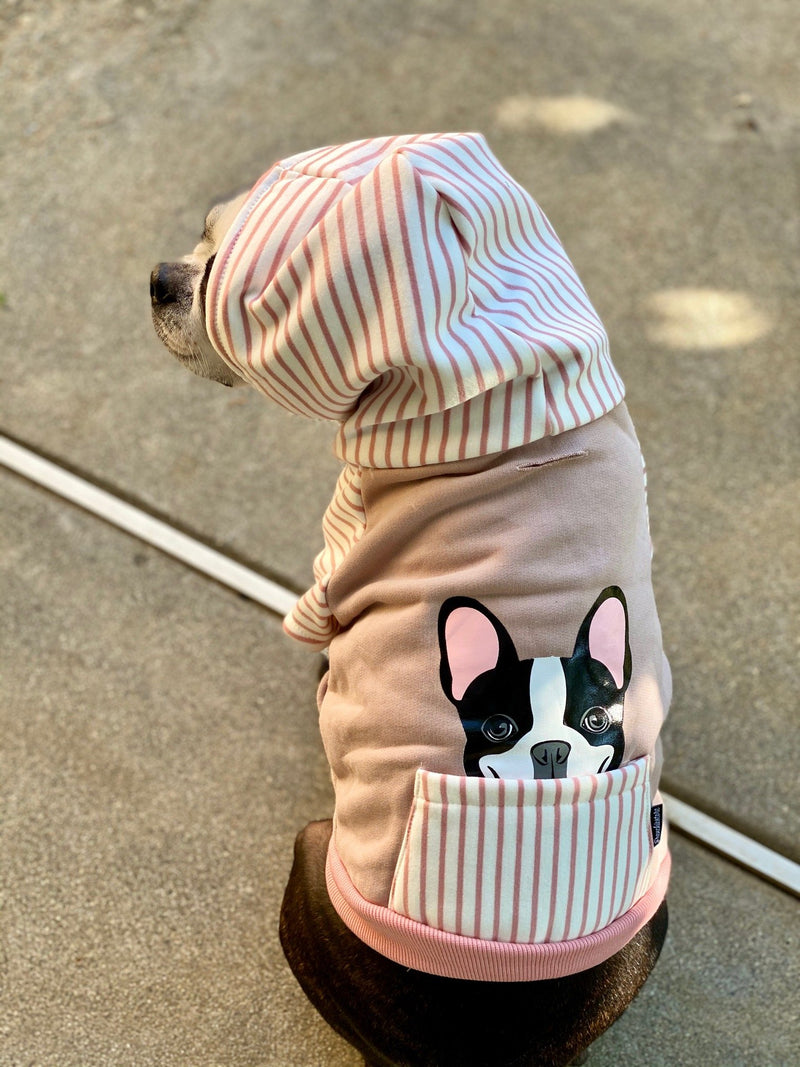 French Bulldog hoodie in pink | Frenchie Clothing | Black Pied Frenchie dog