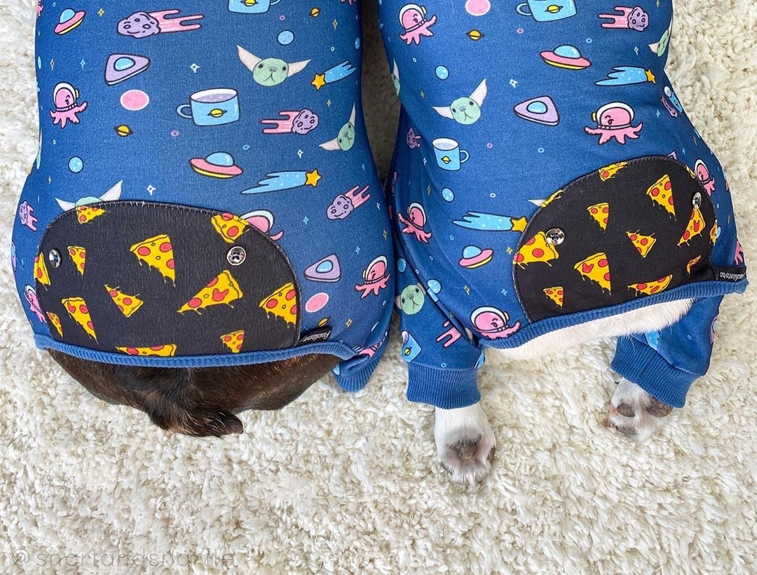 French Bulldog Pajamas | Frenchie Clothing | The Child