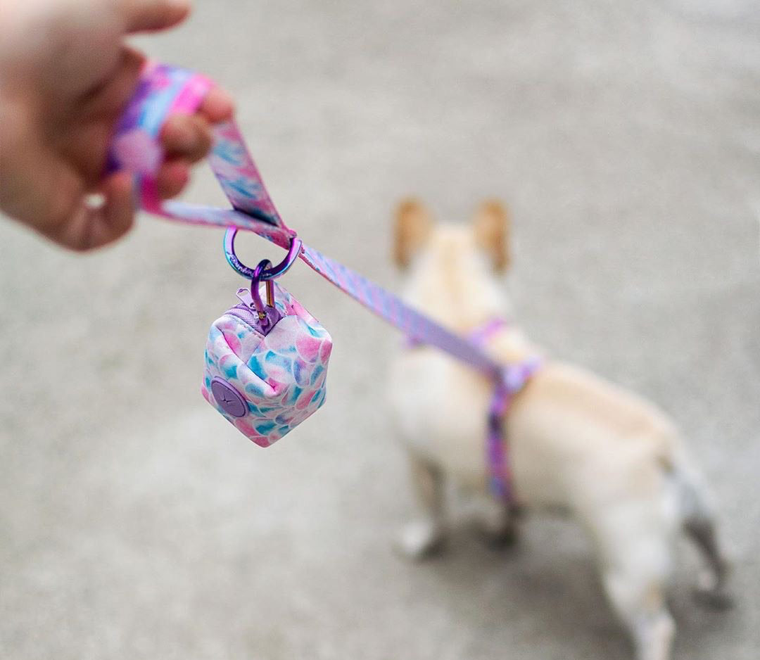 Frenchiestore Luxury Dog Leash | Mermazing