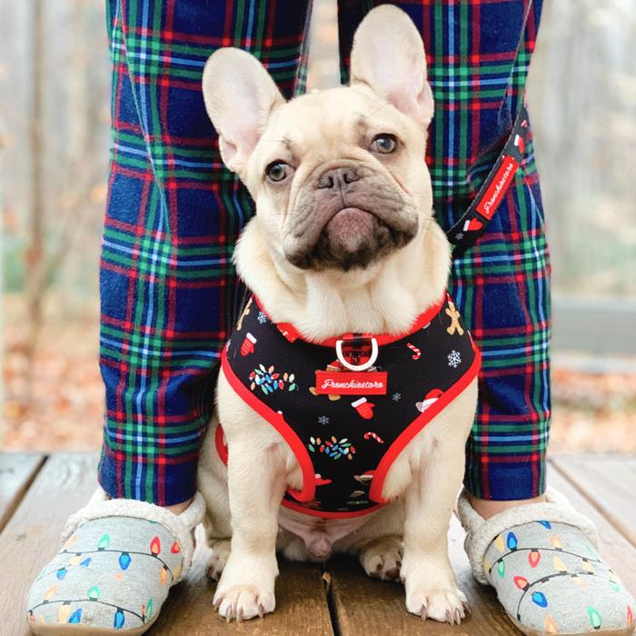 French Bulldog Harness | Versatile Health Harness | Red Buffalo Plaid