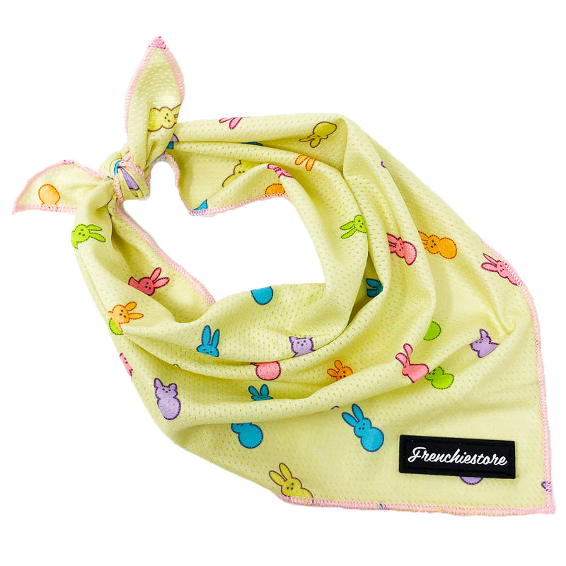 Bandana di raffreddamento per cani Frenchiestore | Gals Peepin 'it Real