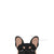black and tan frenchie car decal made by frenchiestore