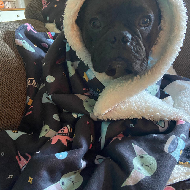 Frenchie Blanket | Frenchiestore | The Child on Black