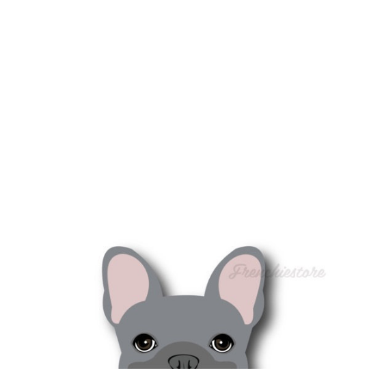 Autocollant Frenchie | Frenchiestore | Sticker voiture bleue bouledogue français
