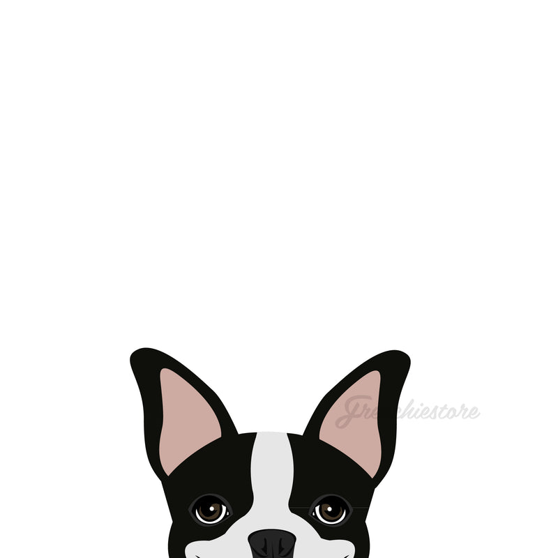 Autocollant pour chien Boston Terrier | Frenchiestore | Sticker Voiture Boston Terrier Pied Noir