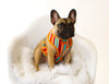 french bulldog apparel dog harness